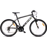 "Mountainbike 26"" 1521 21-gear 55 cm Antr"
