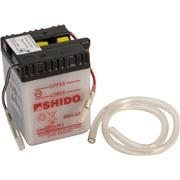 Batteri 6N4-2A SHIDO