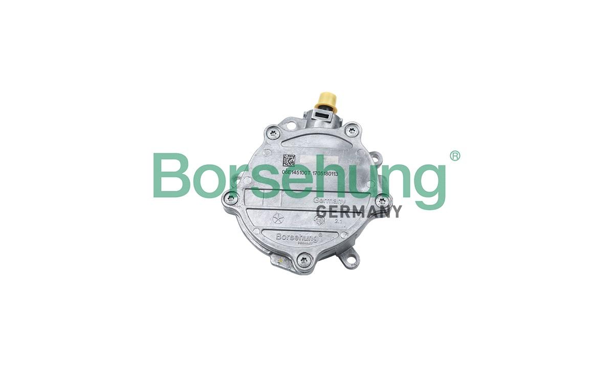 Vakuumpumpe, bremsesystem - (Borsehung)